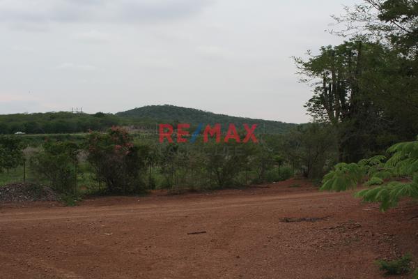Foto de terreno comercial en venta en carretera internacional 15 , agua caliente de garate, concordia, sinaloa, 5641495 No. 15