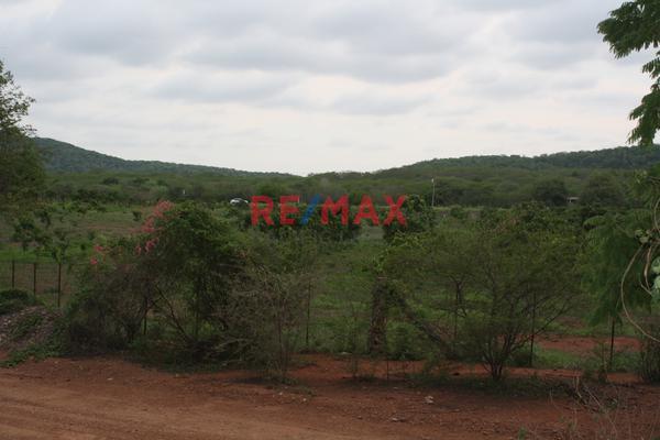Foto de terreno comercial en venta en carretera internacional 15 , agua caliente de garate, concordia, sinaloa, 5641495 No. 16