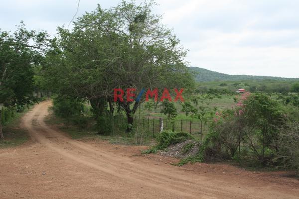Foto de terreno comercial en venta en carretera internacional 15 , agua caliente de garate, concordia, sinaloa, 5641495 No. 17