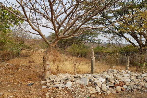 Foto de terreno habitacional en venta en carretera internacional chiapa de corzo-san cristóbal , juan grijalva, chiapa de corzo, chiapas, 7195627 No. 02