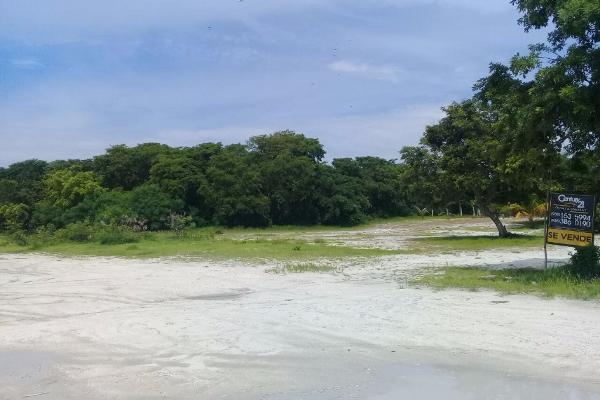 Foto de terreno habitacional en venta en carretera isla aguada-sabancuy kilometro 41 , isla aguada, carmen, campeche, 3675549 No. 02