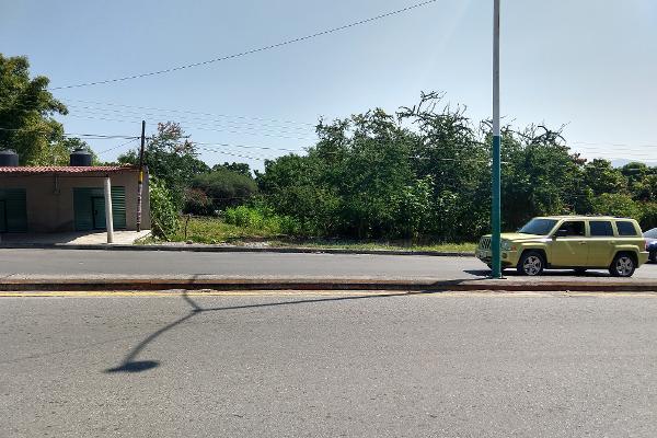 Foto de terreno industrial en venta en carretera jojutla-tejalpa , santa rosa 30 centro, tlaltizapán de zapata, morelos, 9936310 No. 02