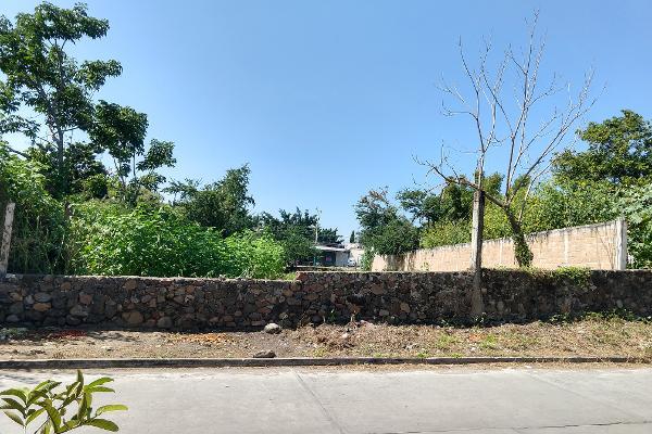 Foto de terreno industrial en venta en carretera jojutla-tejalpa , santa rosa 30 centro, tlaltizapán de zapata, morelos, 9936310 No. 03
