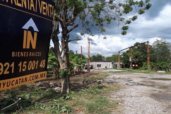 Foto de terreno comercial en venta en carretera kilometro 126.7 , el palmar, cárdenas, tabasco, 14027674 No. 04