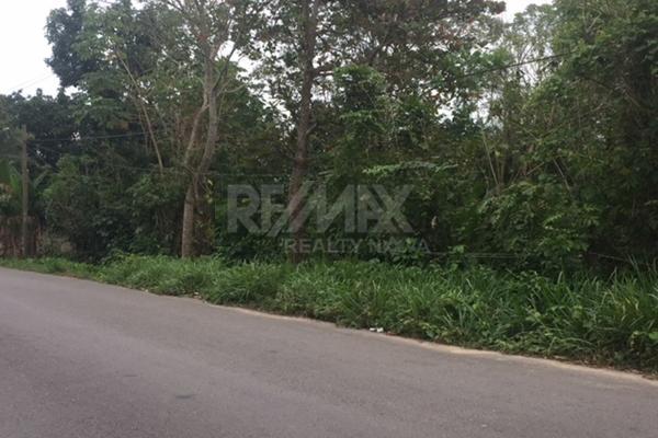 Foto de terreno habitacional en venta en carretera la isla kilometro 13 , luis gil perez, centro, tabasco, 4649222 No. 02