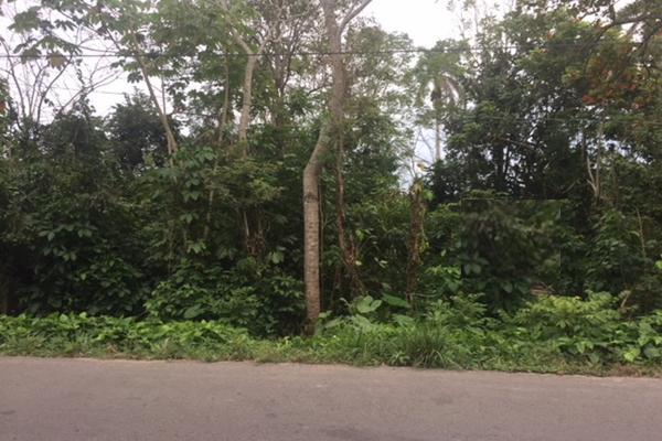Foto de terreno habitacional en venta en carretera la isla kilometro 13 , luis gil perez, centro, tabasco, 4649222 No. 04