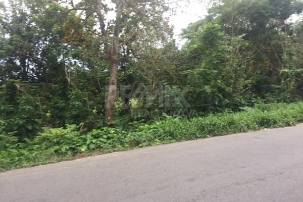 Foto de terreno habitacional en venta en carretera la isla kilometro 13 , luis gil perez, centro, tabasco, 4649222 No. 05
