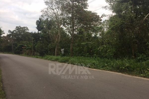 Foto de terreno habitacional en venta en carretera la isla kilometro 13 , luis gil perez, centro, tabasco, 4649222 No. 06