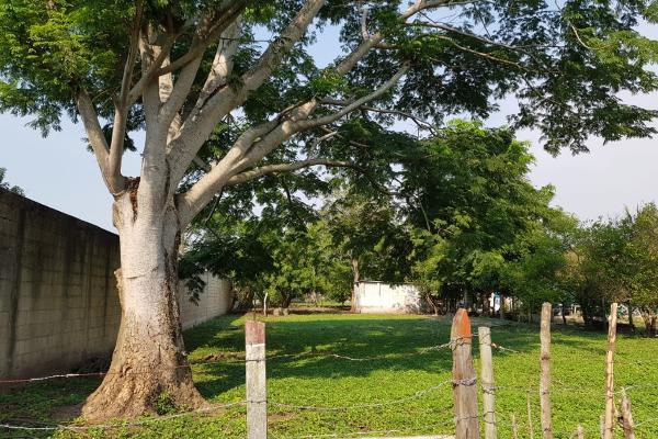 Foto de terreno habitacional en venta en carretera la palma la cruz del bajio s/n , anacleto canabal 1a sección, centro, tabasco, 5441755 No. 04