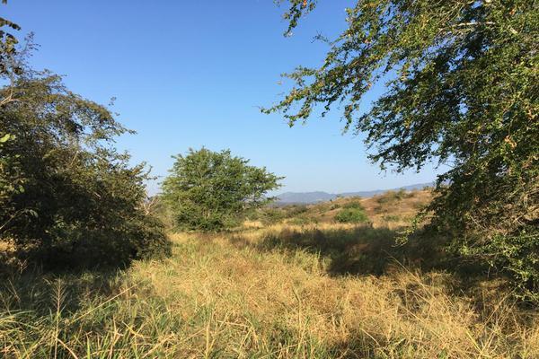 Foto de terreno habitacional en venta en carretera la piña los otates s/n , veladeros de los otates, manzanillo, colima, 7158446 No. 03