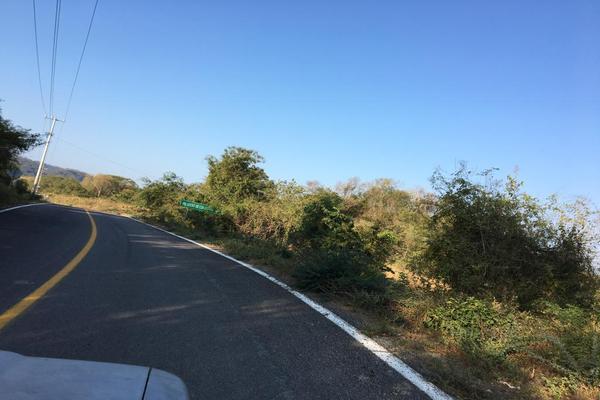 Foto de terreno habitacional en venta en carretera la piña los otates s/n , veladeros de los otates, manzanillo, colima, 7158446 No. 04