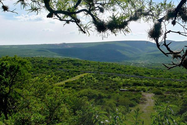 Foto de terreno habitacional en venta en carretera leon-sanfelipe , la lagunita, san felipe, guanajuato, 5641806 No. 01