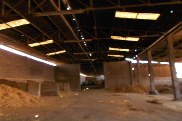 Foto de terreno industrial en venta en carretera melchor ocampo , melchor ocampo centro, melchor ocampo, méxico, 6160258 No. 07