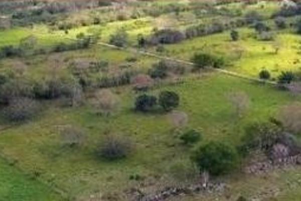 Foto de terreno industrial en venta en carretera merida-motul , conkal, conkal, yucatán, 6127409 No. 01