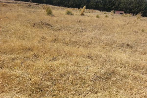 Foto de terreno comercial en venta en carretera mex-cuernavaca kilometro 31.5 , san miguel topilejo, tlalpan, df / cdmx, 8867692 No. 03
