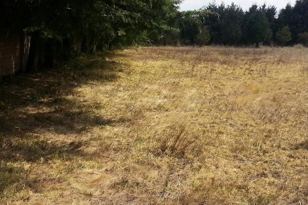 Foto de terreno comercial en venta en carretera mex-cuernavaca kilometro 31.5 , san miguel topilejo, tlalpan, df / cdmx, 8867692 No. 05