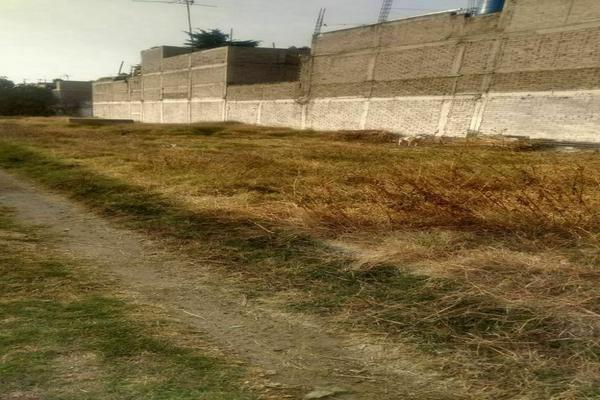 Foto de terreno habitacional en venta en carretera mexico texcoco kilometro 20 , floresta, la paz, méxico, 0 No. 03