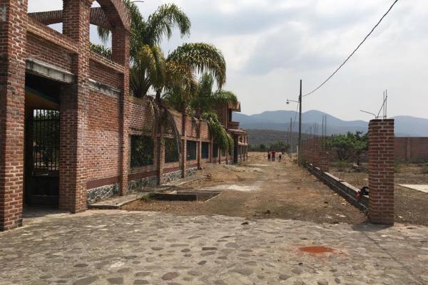 Foto de terreno comercial en venta en carretera miacatlan palpan kilometro 3.5, miacatlan, miacatlán, morelos, 4649786 No. 03