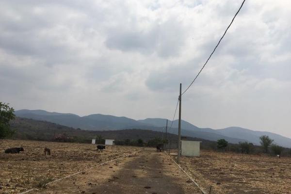 Foto de terreno comercial en venta en carretera miacatlan palpan kilometro 3.5, miacatlan, miacatlán, morelos, 4649786 No. 05