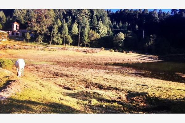 Foto de terreno habitacional en venta en carretera mineral del monte , privada del bosque, pachuca de soto, hidalgo, 8854097 No. 04