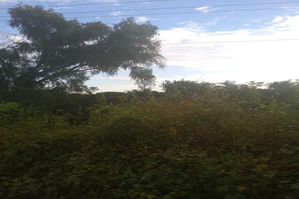 Foto de terreno industrial en venta en carretera nacional acapulco -pinotepa nacional kilometro 15+580 , san pedro de las playas, acapulco de juárez, guerrero, 6149908 No. 02