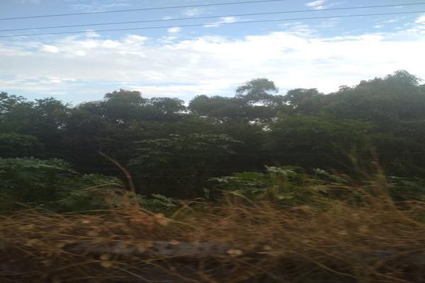 Foto de terreno industrial en venta en carretera nacional acapulco -pinotepa nacional kilometro 15+580 , san pedro de las playas, acapulco de juárez, guerrero, 6149908 No. 03