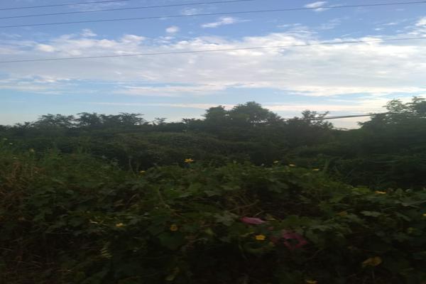 Foto de terreno industrial en venta en carretera nacional acapulco -pinotepa nacional kilometro 15+580 , san pedro de las playas, acapulco de juárez, guerrero, 6149908 No. 04