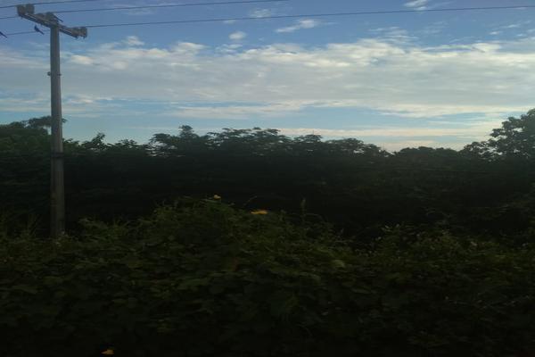 Foto de terreno industrial en venta en carretera nacional acapulco -pinotepa nacional kilometro 15+580 , san pedro de las playas, acapulco de juárez, guerrero, 6149908 No. 06