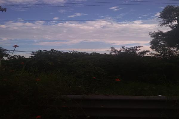 Foto de terreno industrial en venta en carretera nacional acapulco -pinotepa nacional kilometro 15+580 , san pedro de las playas, acapulco de juárez, guerrero, 6149908 No. 08