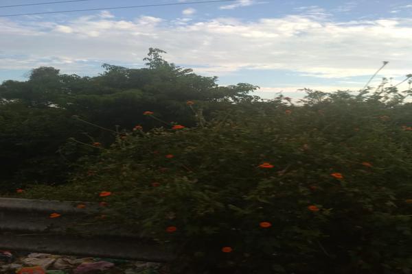 Foto de terreno industrial en venta en carretera nacional acapulco -pinotepa nacional kilometro 15+580 , san pedro de las playas, acapulco de juárez, guerrero, 6149908 No. 11