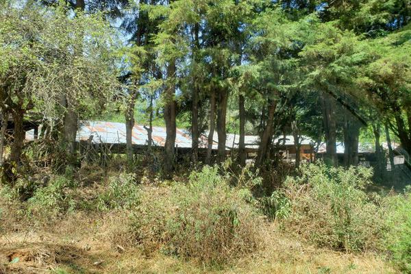 Foto de rancho en venta en carretera patazcuaro santa clara del cobre 1, joya de los molinos, pátzcuaro, michoacán de ocampo, 0 No. 02