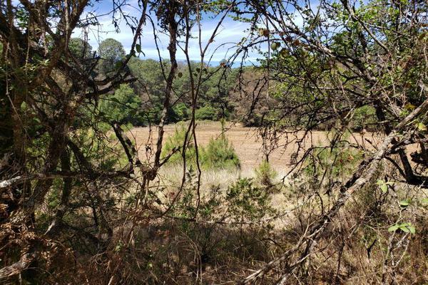 Foto de rancho en venta en carretera patazcuaro santa clara del cobre 1, joya de los molinos, pátzcuaro, michoacán de ocampo, 0 No. 04
