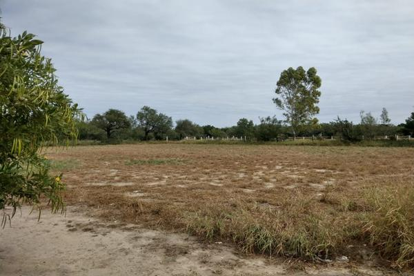 Foto de terreno habitacional en renta en carretera pesqueria a santa maria , la arena, pesquería, nuevo león, 9944320 No. 04
