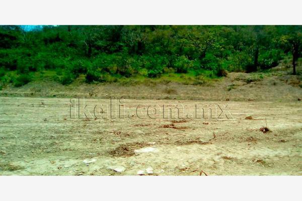 Foto de terreno habitacional en renta en carretera poza rica-cazones , la victoria kilómetro 47, papantla, veracruz de ignacio de la llave, 2694576 No. 05