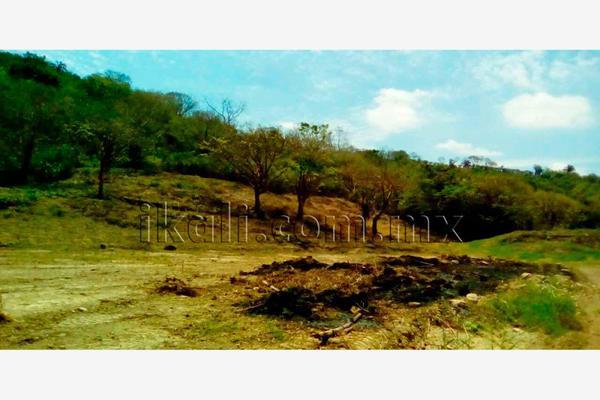 Foto de terreno habitacional en renta en carretera poza rica-cazones , la victoria kilómetro 47, papantla, veracruz de ignacio de la llave, 2694576 No. 06