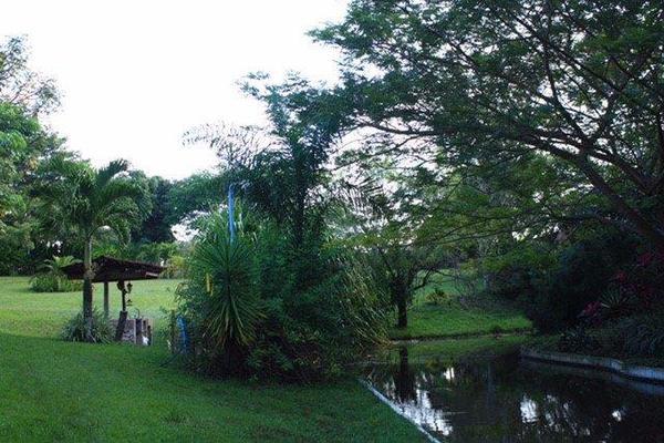 Foto de rancho en venta en carretera principal la palma, dos montes, centro, tabasco , villahermosa (cap. p. a. carlos rovirosa), centro, tabasco, 8385523 No. 03