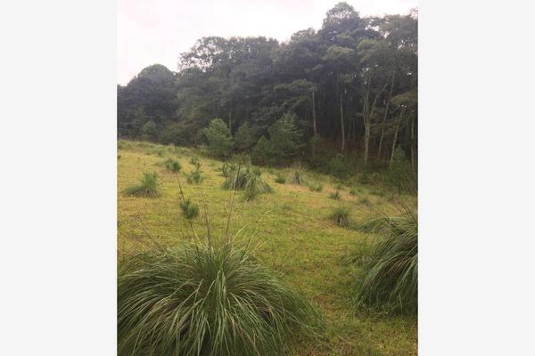 Foto de terreno habitacional en venta en carretera principal sin numero, loma alta, villa del carbón, méxico, 5932896 No. 02