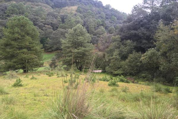 Foto de terreno habitacional en venta en carretera principal sin numero, loma alta, villa del carbón, méxico, 5932896 No. 07