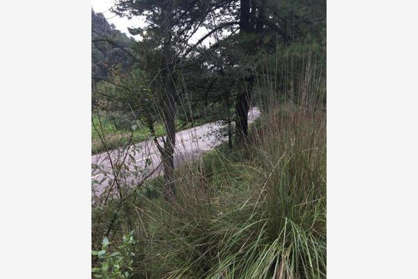 Foto de terreno habitacional en venta en carretera principal sin numero, loma alta, villa del carbón, méxico, 5932896 No. 08