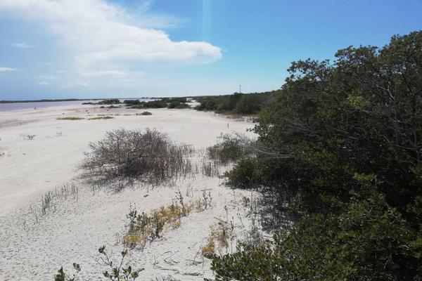 Foto de terreno comercial en venta en carretera progreso-telchac kilometro 15, chicxulub puerto, progreso, yucatán, 15332072 No. 07