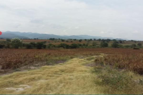 Foto de terreno habitacional en venta en carretera que va al balneario , axochiapan, axochiapan, morelos, 18523369 No. 01