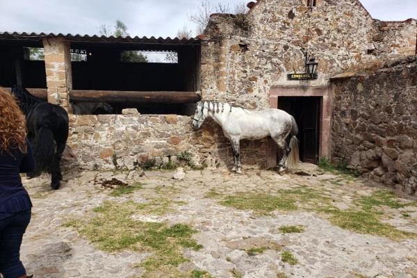 Foto de terreno habitacional en venta en carretera queretaro kilometro 27 s / n, jonacapa, huichapan, hidalgo, 11434382 No. 08