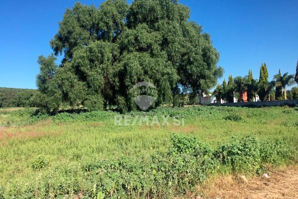 Foto de terreno comercial en venta en carretera queretaro - san luis , santa elena, san josé iturbide, guanajuato, 3684574 No. 03