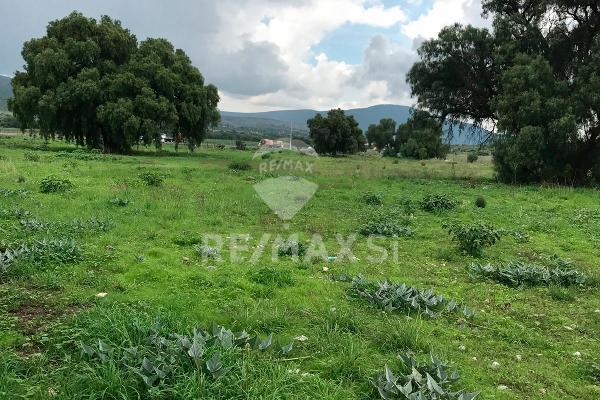 Foto de terreno comercial en venta en carretera queretaro - san luis , santa elena, san josé iturbide, guanajuato, 3684574 No. 14