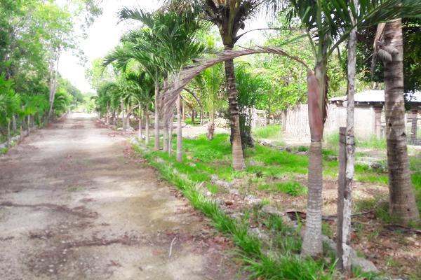 Foto de rancho en venta en carretera rancho viejo , isla mujeres centro, isla mujeres, quintana roo, 3479358 No. 05