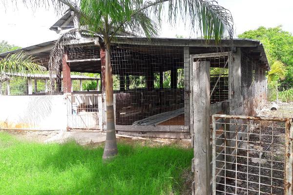 Foto de rancho en venta en carretera rancho viejo , isla mujeres centro, isla mujeres, quintana roo, 3479358 No. 06