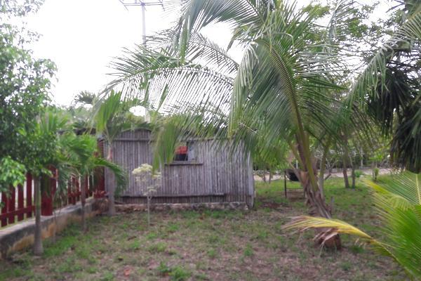 Foto de rancho en venta en carretera rancho viejo , isla mujeres centro, isla mujeres, quintana roo, 3479358 No. 08
