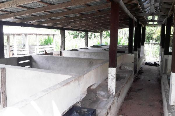 Foto de rancho en venta en carretera rancho viejo , isla mujeres centro, isla mujeres, quintana roo, 3479358 No. 11