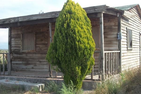 Foto de terreno habitacional en venta en carretera saltillo zacatecas , agua nueva, saltillo, coahuila de zaragoza, 3455366 No. 03