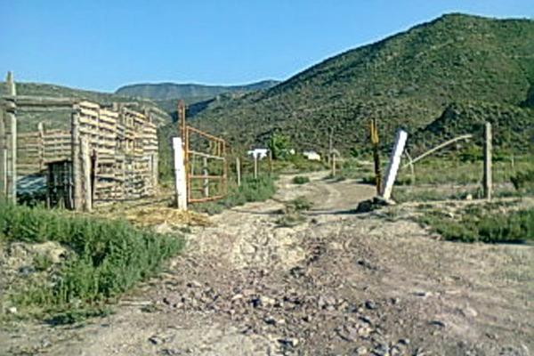 Foto de terreno habitacional en venta en carretera saltillo-torreón(las barrancas) , gral. cepeda, general cepeda, coahuila de zaragoza, 3475944 No. 03